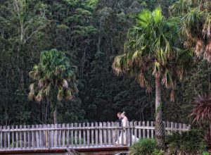 wedding gallery 2016 the best of the best expect this quality with your wedding, DMT Photography Coffs Harbour NSW Australia 109